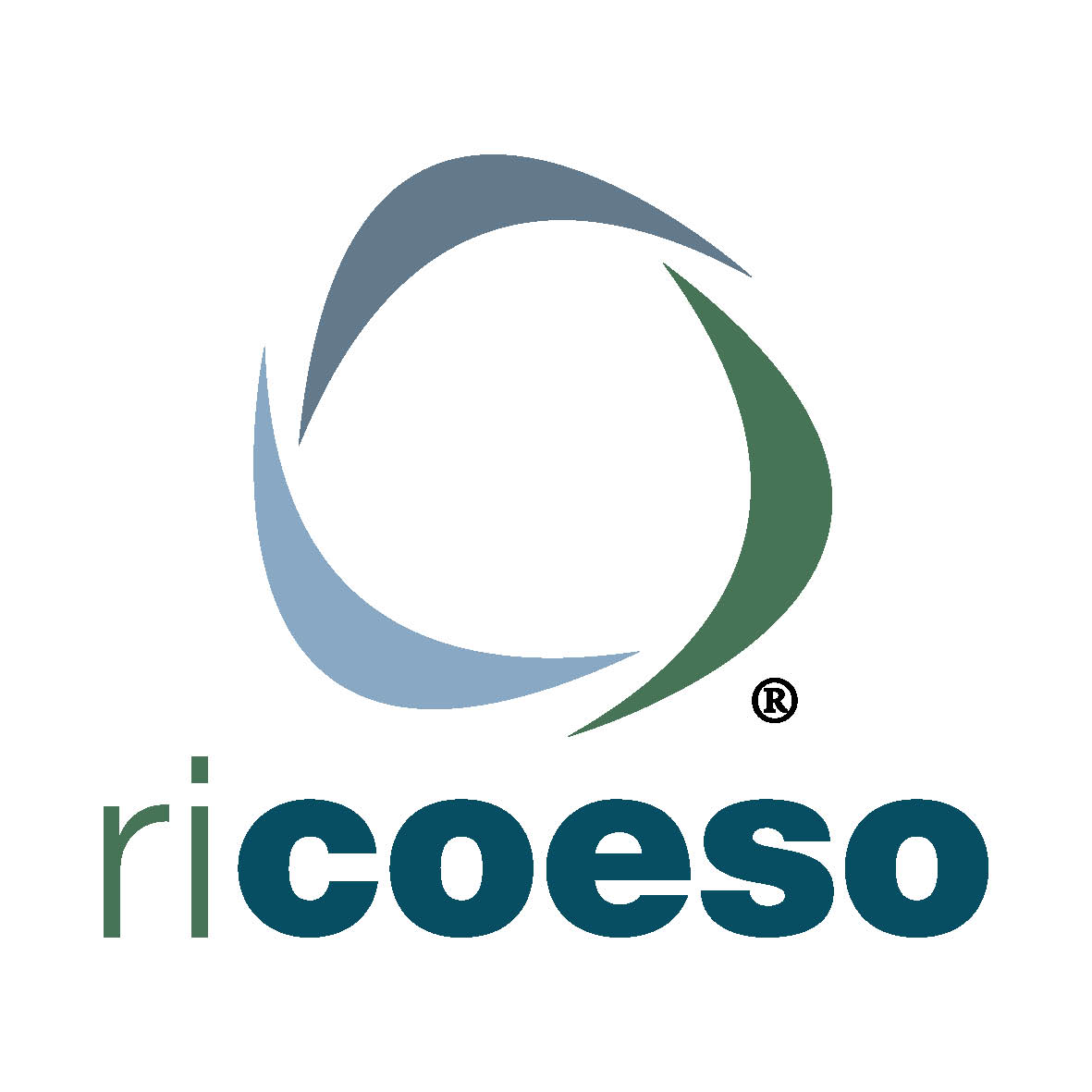 logo prodotto RICOESO